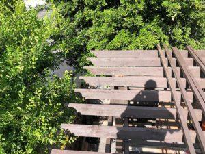 Tim's Pergola 05 East Austin Carpenters Project