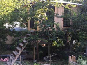 Treehouse Project 07 East Austin Carpenters Project